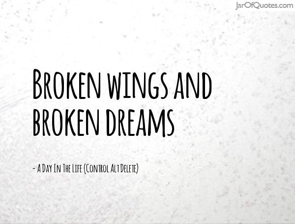 Broken wings and broken dreams - Jar of Quotes