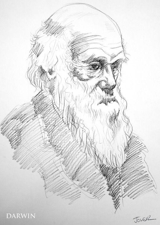 Günter Tauchner