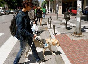Πώς καθοδηγούν οι σκύλοι τους τυφλούς           -            Η ΔΙΑΔΡΟΜΗ ®