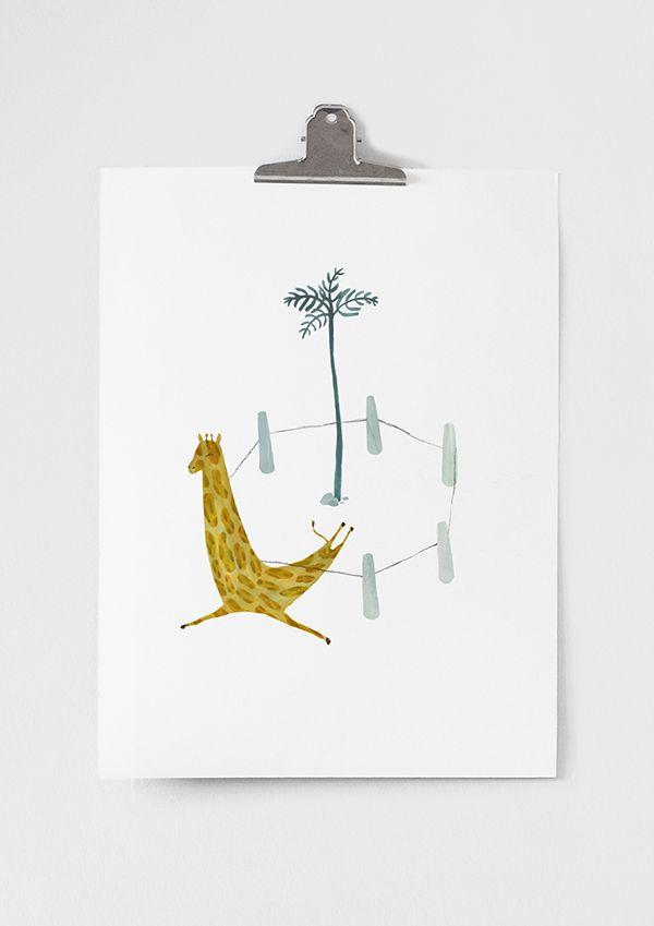 Runaway giraffe