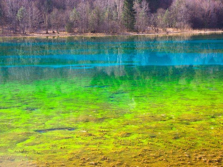Five Flower Lake  Jiuzhaigou Valley, China