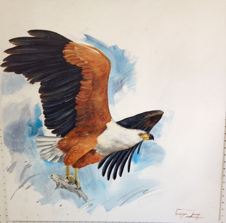Catch of the day, Fish Eagle, oil on canvas, 76 X 76 cm