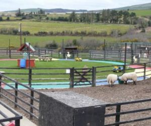 Tick-Tock+Activity+Farm+opened+in+2007.+Situated+in+Thomastown+just+4km+from+Arklow,+this+activity+farm+is+run+and++-+Please+Like+&+Share