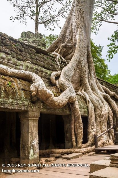 There are entrance gopuras at each of the cardinal points, although access today is now only possible from the east and west. In the 13th century, face towers similar to those found at the Bayon were added to the gopuras. Some of the face towers have collapsed.