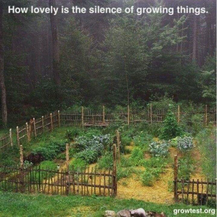 Nice Garden Fencing