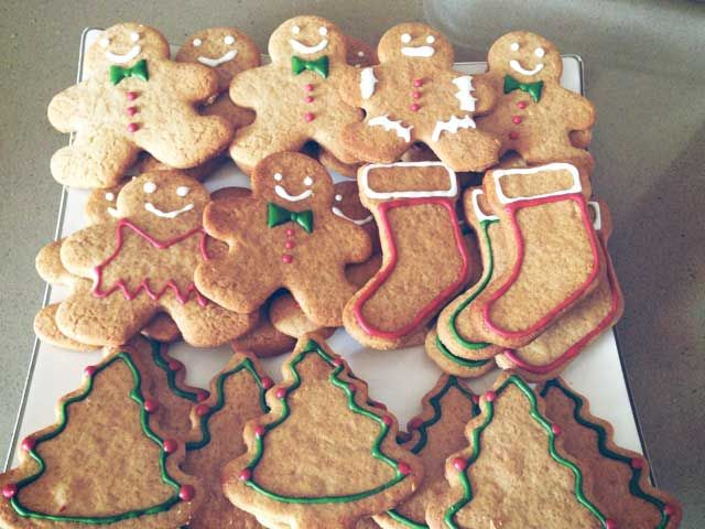 Biscotti di pan di zenzero   Papavero Albino