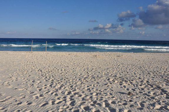 Deliciosa praia na costa leste da ilha de Cozumel, no litotal de Yucatán, no sul do México