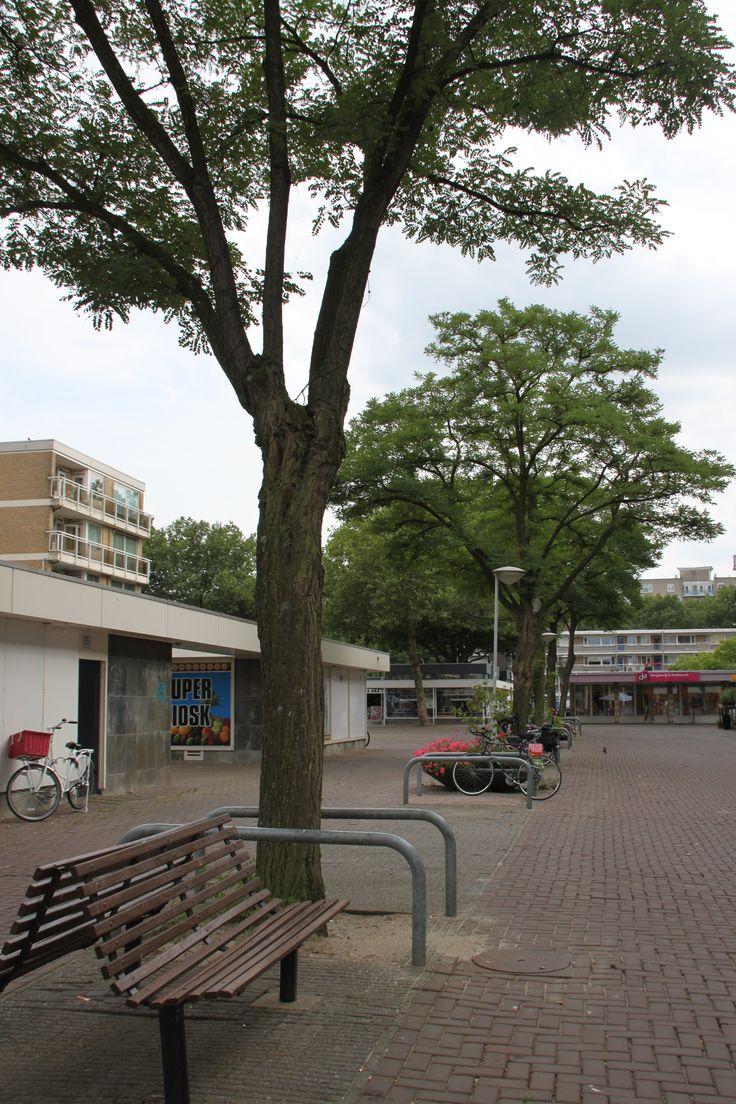 Samuel Esmeijerplein @HetLageLand Rotterdam,The Netherlands