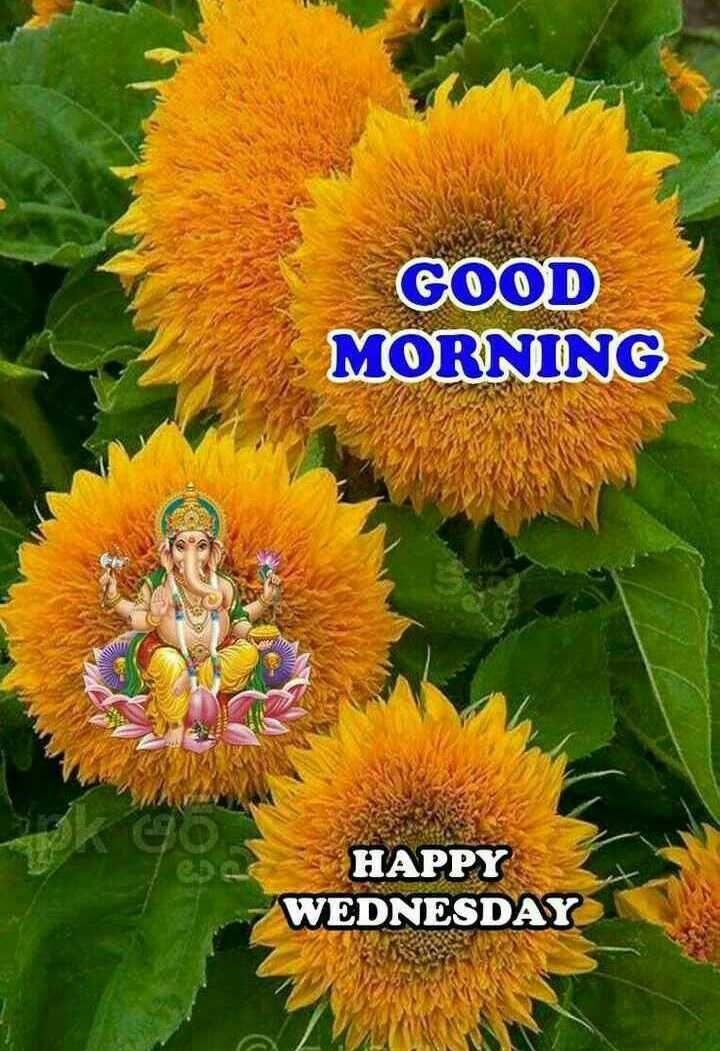 Good Morning Good Morning Qube Happy Wednesday Sharechat Good Morning Wednesday Good Morning Happy Good Morning Sunday Images