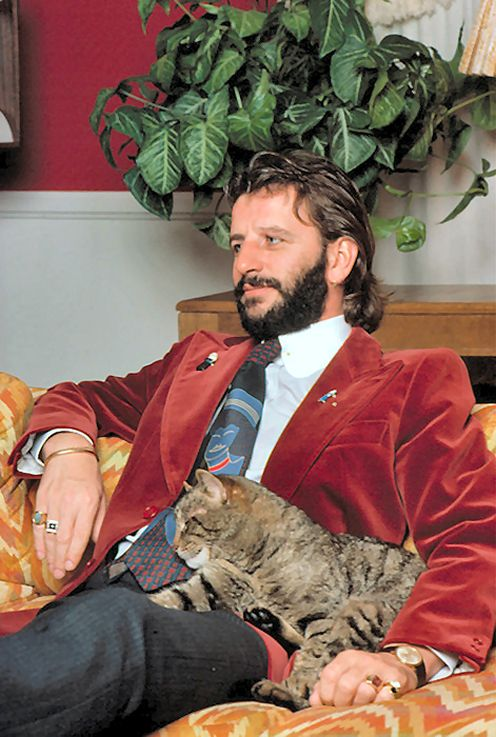 Can't beat this. Beatles and cats. / JUST ONE MORE REASON THAT I LOVE ME SOME RINGO STAR!  ♥