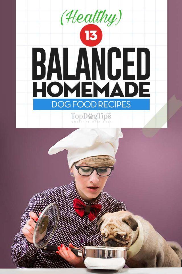 The 30 Best Balanced Homemade Dog Food Recipes Balanced Homemade
