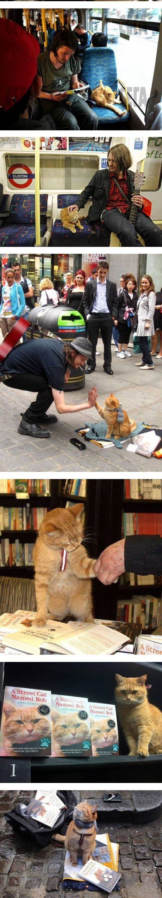 They Are Friends Forever an awesome read too! A street cat named Bob