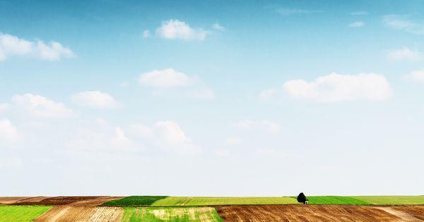 Zufriedener dank Minimalismus - warum Weniger glücklicher macht