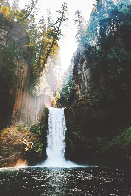 souhailbog:  Simple Beauty By   Nick Verbelchuk| More