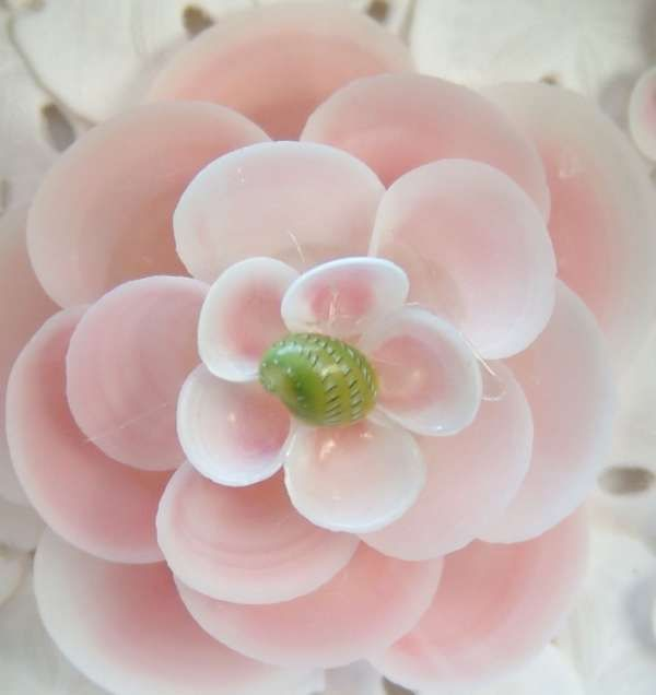 118 best images about shell flowers on pinterest for Sea shell crafts