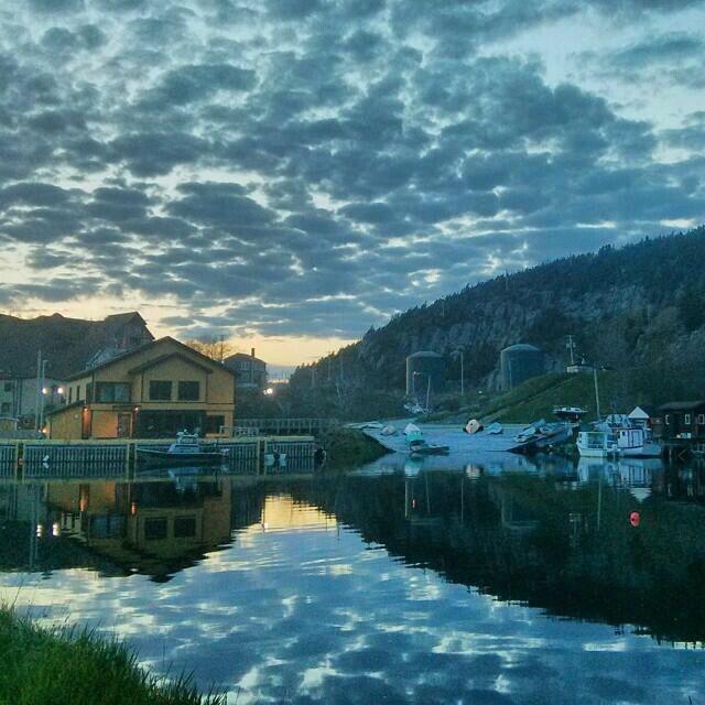 1000+ Images About Beautiful Newfoundland On Pinterest