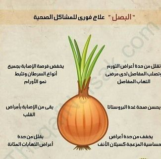 Pin By Amira Karoui On Http Nafies Com Vegetable Benefits Health Facts Food Health