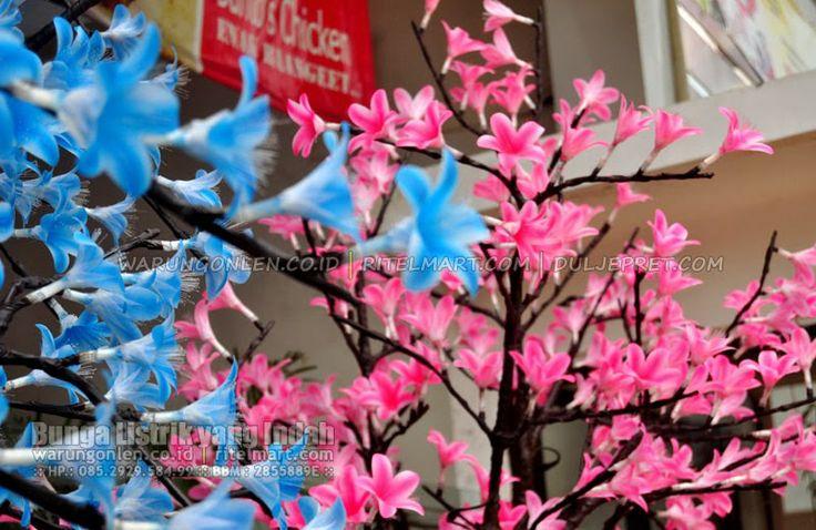 Bunga Listrik yang Indah (Sebuah Photo Portfolio warungonlen.co.id) | warungonlen.co.id