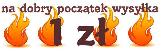 wysyłamy do każdego miejsca w Polsce jedynie za 1 zł.