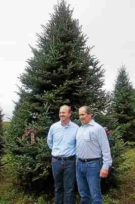 Lansdale company to supply official White House Christmas tree http://buff.ly/1LbNExe #pahomelink