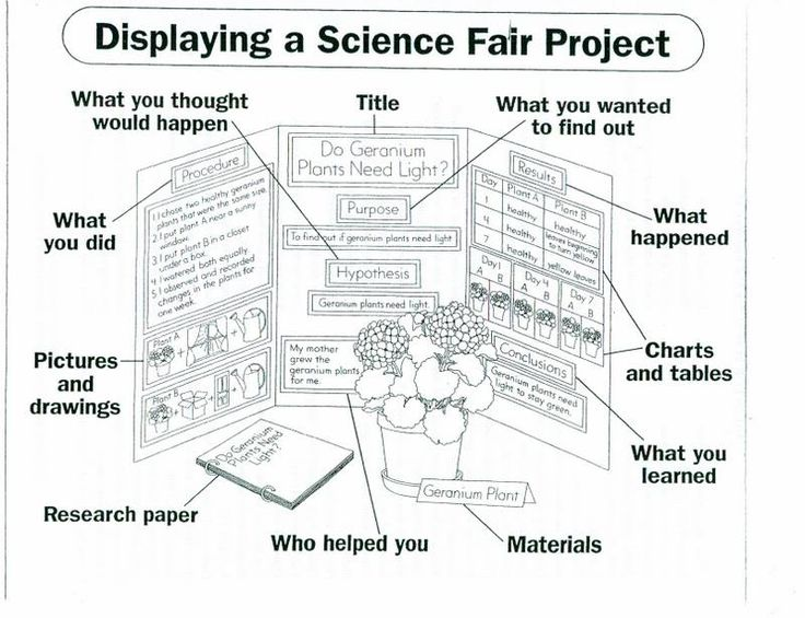 106 Best Science Fair! Images On Pinterest Science Fair Poster