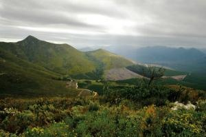 knysna - 300.jpg This is home ground. The Garden Route.