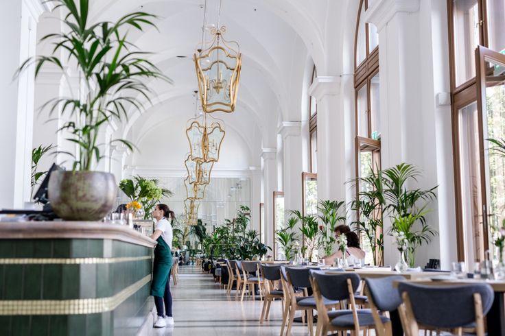 A Várkert Bazár történelmi épületébe egy fiatalos bisztró költözött, ahol plafonig érnek az ablakok meg a növények, és ahol olasz séfek főznek izgalmas, fúziós ételeket.