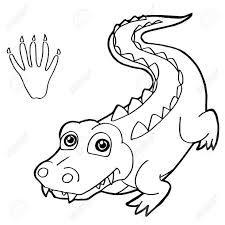 afbeeldingsresultaat voor kleurplaat krokodil