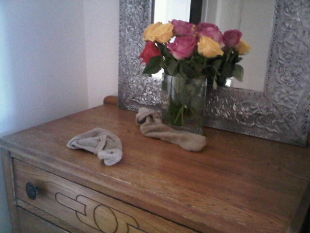 Roses & Man Socks Vignette @ Coffee with JulieSocks Vignettes, Man Socks, Quality Bamboo, Bamboo Socks, Tops Quality