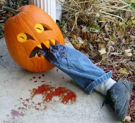 38 Halloween Pumpkin Carving Ideas & How To Carve   RemoveandReplace.com