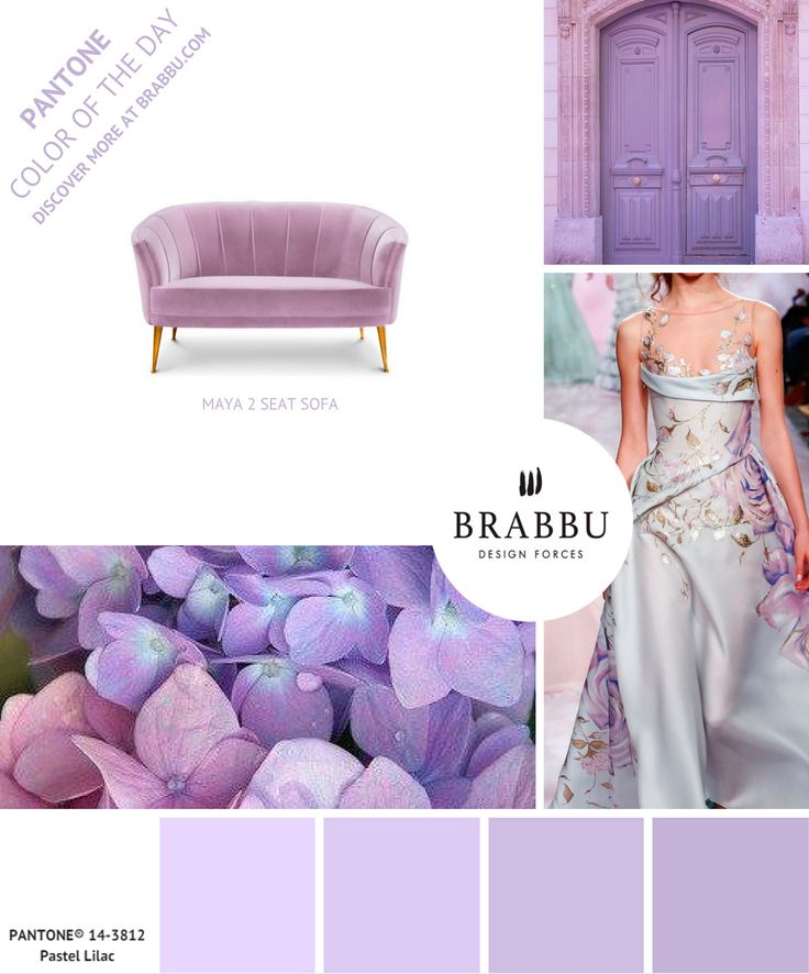 @pantonecolor Color of the Day: Pastel Lilac | Mood Boards. Color Trends. #colors #pantone #moodboard #interiordesign Discover more at: https://www.brabbu.com/moodboards/