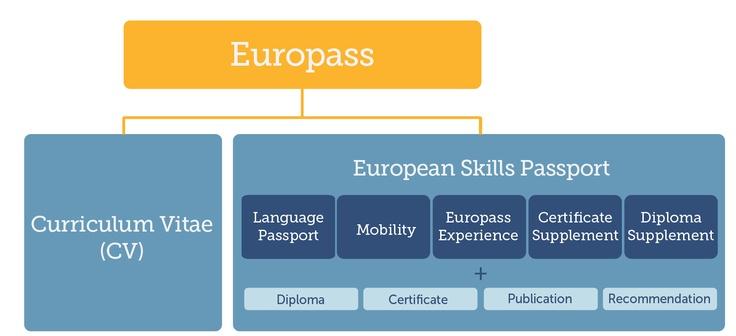 The structure of your Europass-portfolio.  Read more: http://europass.cedefop.europa.eu/newsletters/Europass_Newsletter_20_December_2012.pdf#=page2