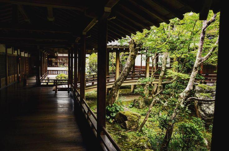 ✯ ✮ ✭ ✯ ✮ ✭ ✯ ✮ ✭ ✮ ✭ ✯ ホッとする眺め #趣味 #カメラ #camera #nikon #ニコン #D7000 #フォト #photo #photography #カメラ好きな人と繋がりたい #写真好きな人と繋がりたい #写真撮ってる人と繋がりたい #写真部 #ニコン倶楽部 #nikon_photography #icu_japan #wp_japan #japan #ファインダー越しの私の世界 #カメラ男子 #散歩 #旅 #旅人 #travel #一眼レフ #一眼レフカメラ #写真