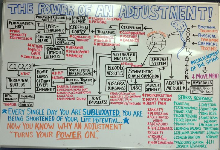 Pin by Family First Health Center on Power of Adjustment