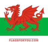 2' x 3' Wales flag