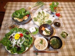 タケノコご飯、アオサの味噌汁、採れたて新鮮サラダ、ピーナツ豆腐(本ワサビと純胡椒を乗せて)、野生のミツバのお浸し、ノビル、アサツキに自家製味噌添え、自家製ぬか漬け、自家製大豆のおからのハンバーグ、山菜の天ぷら(タラノメ、山ウド、クズの新芽、野生のミツバ、田セリ)、もずく酢、イチゴのロームース農楽里ファーム