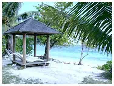 Wisata Raja Ampat Tour Papua paling eksotis