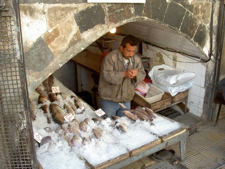 fish-shop