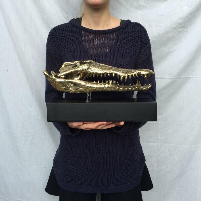 Krokodil schedel van brons gemaakt gemonteerd op stand - lengte 37 cm  Deze schedel krokodil is gemaakt van brons en kan daarom niet via een authentiek krokodil schedel.Het brons is gepolijst waardoor het een gouden tint.De afmetingen zijn:Lengte 37 cm.Breedte 16 cm.Hoogte 21 cm.  EUR 25.00  Meer informatie