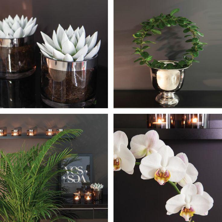 Moderne interiørstil hos Mester Grønn http://www.mestergronn.no/blogg/tre-interiorstiler-hos-mester-gronn/