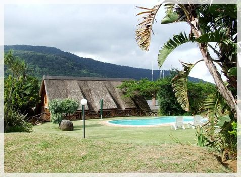 Garden view of the Lodge. Ingeli Forest Lodge. www.ingeliforestlodge.com