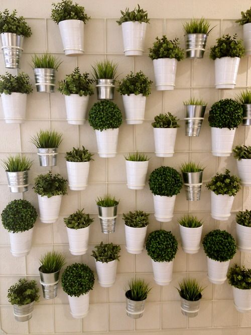 plant wall I want to do this with herbs  The Cordelle | Landscape Www.thecordelle.com Nashville wedding venue event