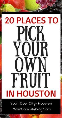 20 places to pick your own fruit in Houston, TX.  See places where you can pick berries and more!