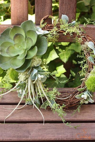 ツキイチリースでした♪|Chances News 多肉植物のリース  #wreath #green