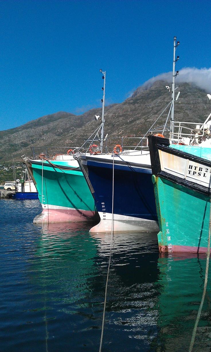 Fishing Boats at Hout Bay