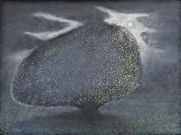 Richard Cartwright Elderflowers