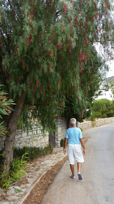 Çırkan Köyü KONACIK