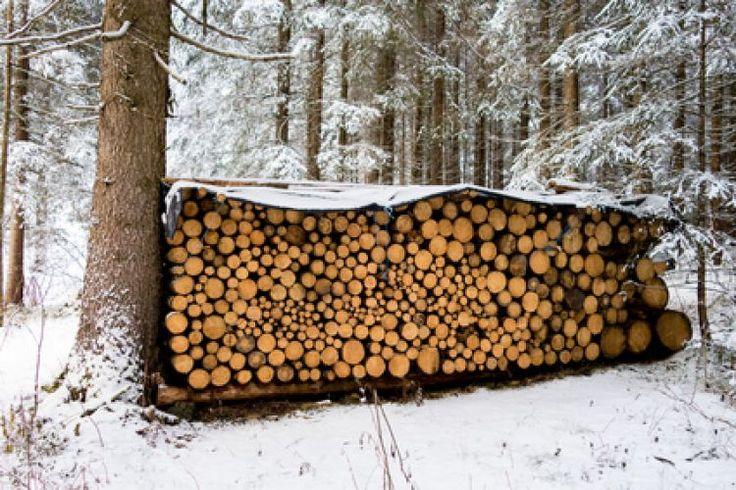 Comment vérifier sa livraison de bois de chauffage et calculer le nombre de stères livrés par votre fournisseur