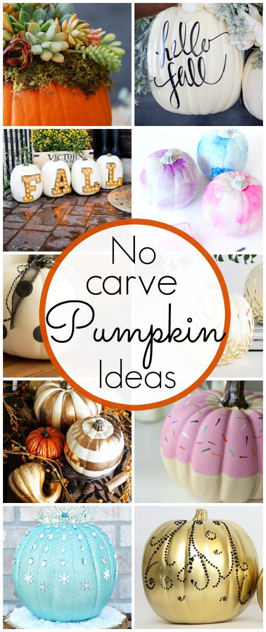 Pumpkin Decorating Ideas - I love these no carve options! Click for more ideas - www.classyclutter.net