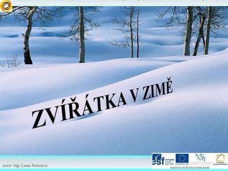 Elektronické učební materiály – 1. stupeň Společnost Autor: Mgr. Lenka Radošová.